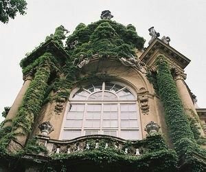 vintage, green, and house image