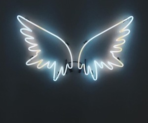 neon, angel, and wings image