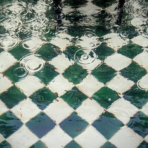 water, rain, and green image