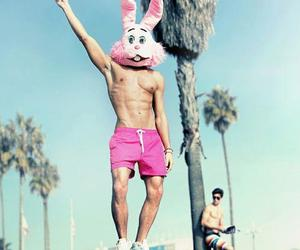 boys, summer, and bunny image