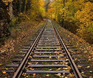 railroad, rural, and train tracks image