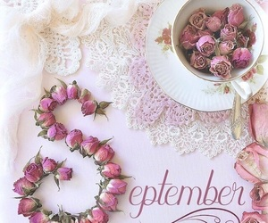 flowers, pink, and September image