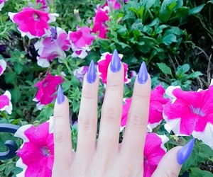 gel nails, fashion, and flowers image