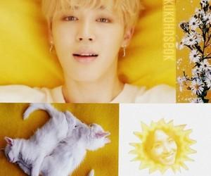 cute boy, jin, and mochi image