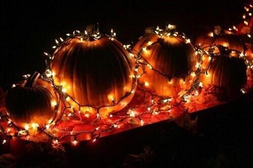 pumpkin, light, and Halloween image