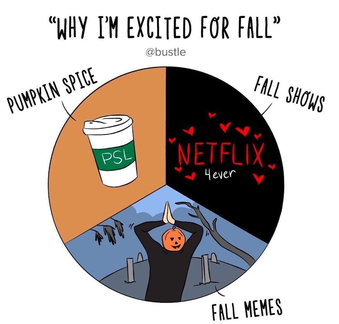 autumn, fall, and funny image
