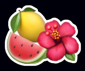 FRUiTS and overlay image