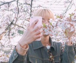boy, flower, and nct image
