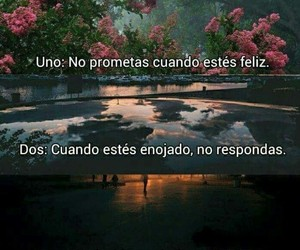 frases and rules image