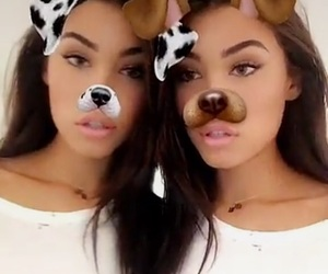 madison beer and puppy filter image