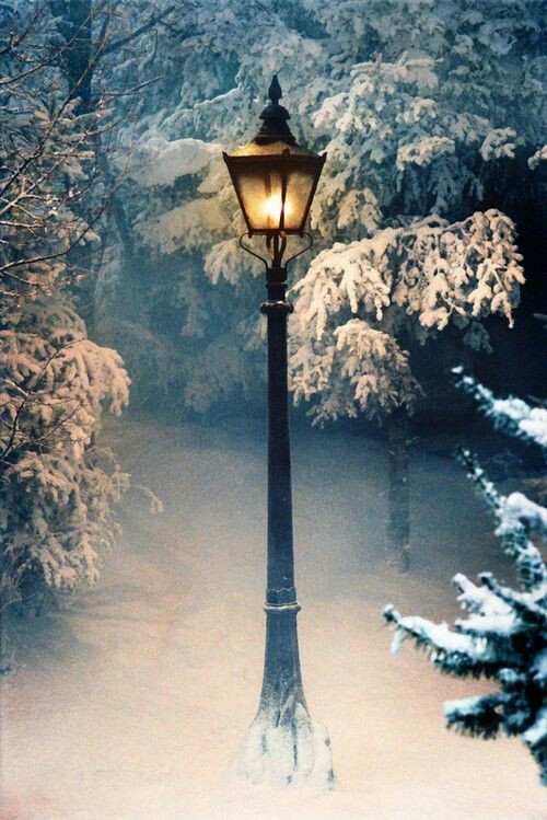 beautiful, cold, and winter image