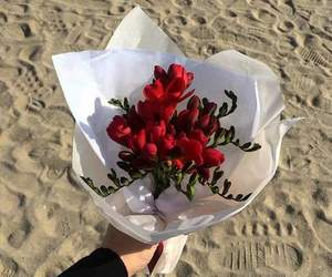 beach, flowers, and red image