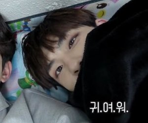 kpop, kim wonpil, and day6 image