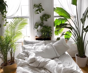 bedroom, plants, and green image