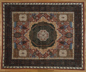 fringe, oriental rugs, and carpets and rugs online image