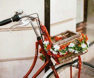 flowers, bike, and vintage image