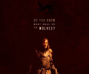 dogs, wolves, and the hound image