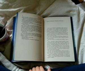 autumn, libri, and the image