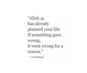 islam, allah, and life image