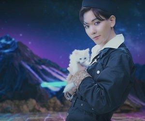 cat, baekhyun, and exo-l image