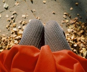 autumn, fall, and legs image