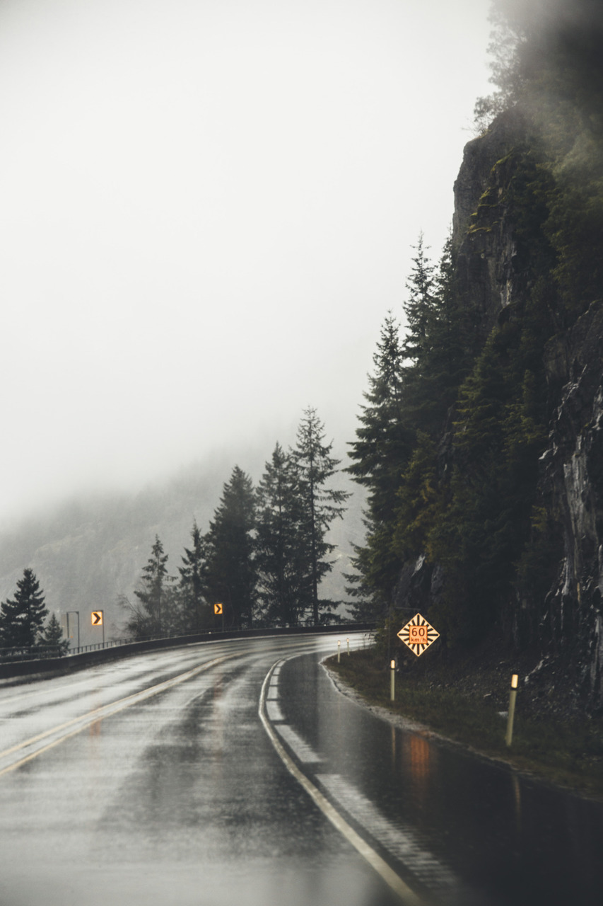 rain, road, and nature image