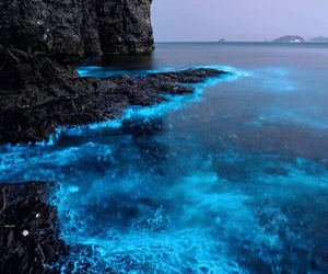 blue, ocean, and nature image