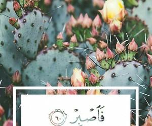 islam, islamic, and quran image