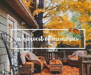fall, memories, and autumn image