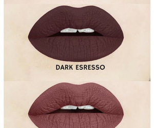 brown, dark, and fall image