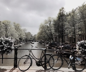 aesthetic, amsterdam, and beautiful image