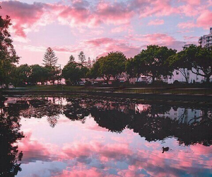 nature, pink, and sunset image