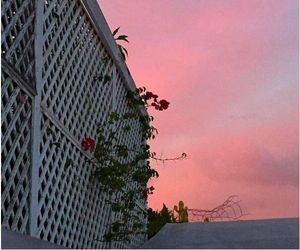 aesthetic, pink, and sky image