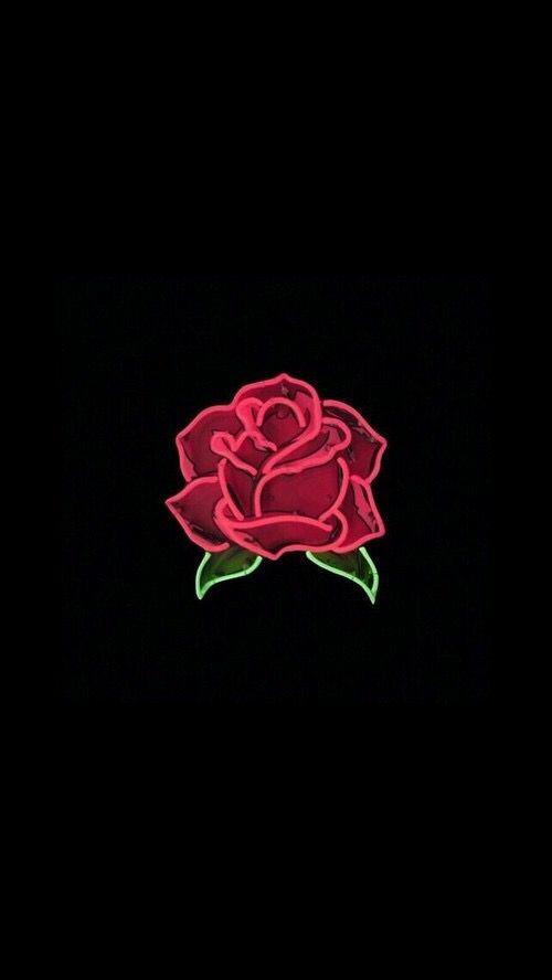 Dark Rose Shared By Clauchick On We Heart It