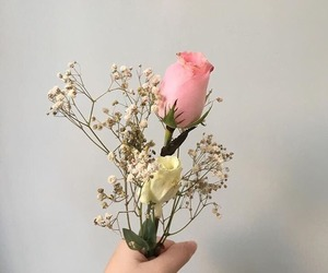 flower, tumblr, and lovely image