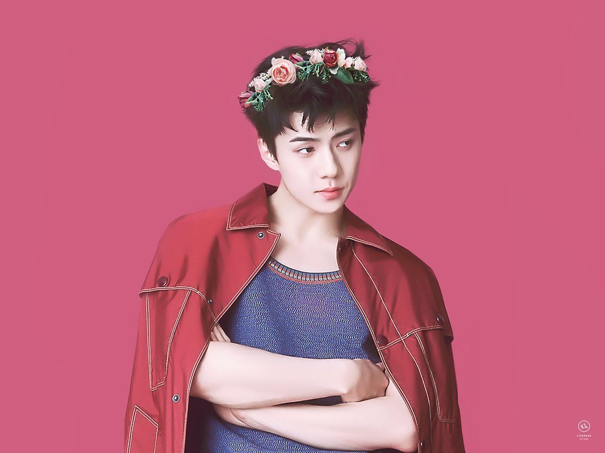 exo and sehun image
