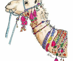 camel and drawing image