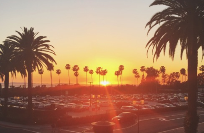 article, summer, and california image