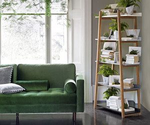 green, home, and interior image