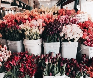 bouquets, florist, and fresh image