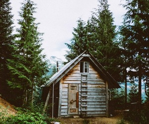 aesthetic, autumn, and cabin image