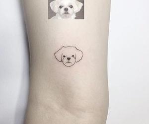 arm, cane, and dog image