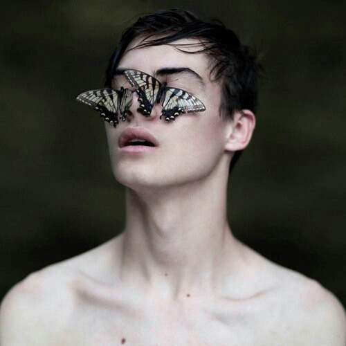 butterfly, boy, and man image