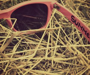 hay, sunglasses, and pink image