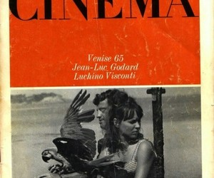 aesthetic, anna karina, and cinema image