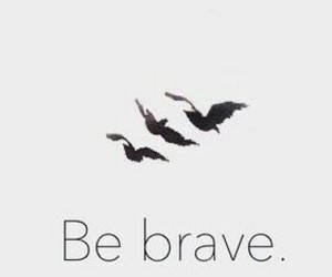 brave and bird image