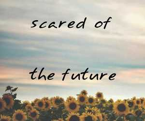 background, sad, and sunflower image