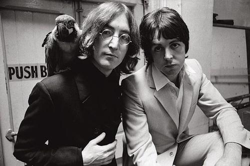 Paul McCartney, john lennon, and the beatles image