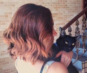 black cat, pet, and cat image
