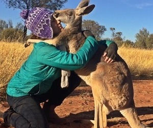 australia, hug, and kangourou image